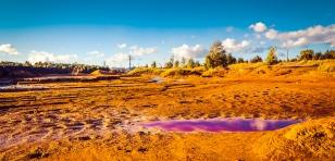 Pollution de l'environnement par l'usine