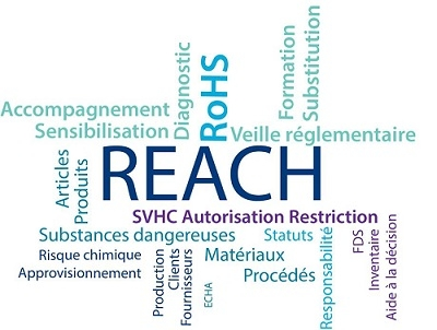 REACH, diagnostic et accompagnement